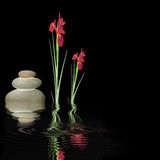 Zen-Ruhe Stockfoto
