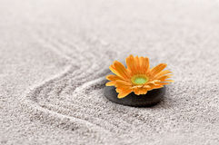 Zen sand garden with orange flower Stock Images