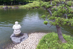 Zen scenery. Zen landscape with pine tree and stone lantern Royalty Free Stock Photography