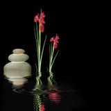 Zen Silence Stock Photo