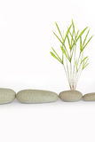 Zen Simplicity Stock Photos