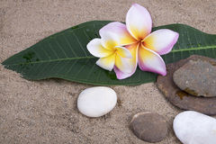 Zen spa conceptenachtergrond Stock Foto's
