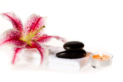 Zen spa lily Royalty Free Stock Photography