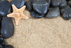 Zen spa rivierrotsen en shells  royalty-vrije stock afbeelding