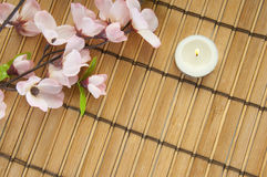 Zen spa setting. Pretty flowers by tea candle Royalty Free Stock Images