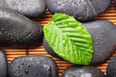 Zen or spa stones Stock Photos