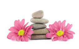 Zen / spa stones with flowers Stock Images