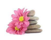 Zen / spa stones with flowers Stock Image