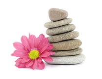 Zen / spa stones with flowers Stock Photo