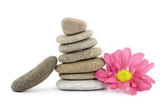 Zen / spa stones with flowers Stock Photos