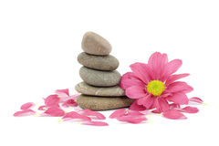 Zen / spa stones with flowers Royalty Free Stock Photography