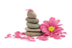 Zen / spa stones with flowers Royalty Free Stock Photo