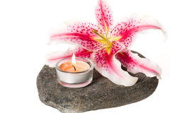 Zen spa stones and lily Stock Images