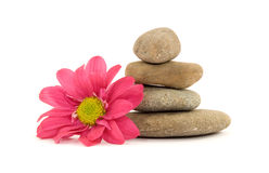 Zen spa therapy stones Stock Photos