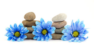 Zen spa therapy stones Royalty Free Stock Photo