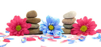 Zen spa therapy stones Stock Images