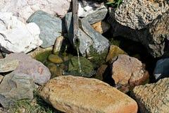 Zen spring Royalty Free Stock Image