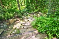 Zen Steps Stock Photo