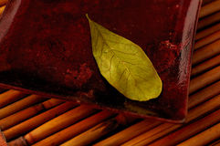 Zen Still Life. Leaf on a plate in rich colors royalty free stock photography