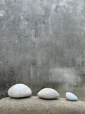 Zen still life Stock Images