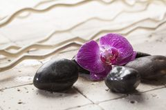 Zen still-life with massage stones and flower Stock Photos