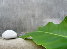 Zen still life - Natural SPA Royalty Free Stock Photos