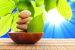 Zen stone. And green leaf showing spa or wellness concept Stock Photography