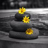 Zen Stone Fotografering för Bildbyråer