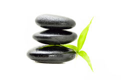 Zen stone with bamboo leaf Stock Photos
