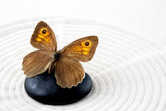 Zen stone with butterfly Stock Photos