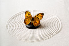 Zen stone with butterfly Stock Photo