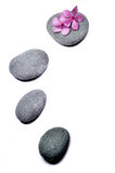 Zen stone with flowers. Isolated on white background Royalty Free Stock Photo