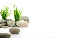 Zen stone with fresh grass Stock Photography
