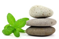 Zen stone with fresh leaf Stock Photography