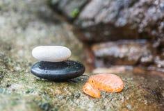 Zen Stone in Kuuroordconcept Stock Foto's