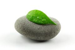 Zen stone with leaf Stock Photos