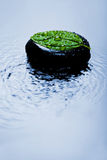 Zen stone and leaf in water Stock Photography