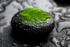 Zen stone and leaf with water drops. Black zen stone and leaf with water drops Stock Photos