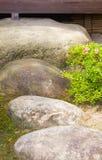 Zen stone path Stock Image