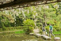 Zen stone path in a pone near Heian Shrine. Royalty Free Stock Photo