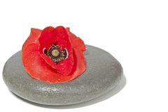 Zen stone with red poppy flower Royalty Free Stock Images