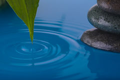 Zen Stone Water and Peace Plant Leaf. Zen Stone with Water ripples and Peace Plant Leaf with drop Stock Image