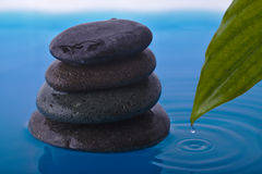 Zen Stone Water and Peace Plant Leaf Stock Images