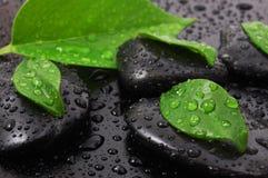 Zen stone wellness concept Stock Photography