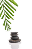 Zen stones. With palm leaves on white Royalty Free Stock Photo