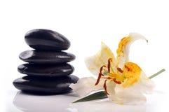 Zen stones. Lilly spa with zen stones Stock Photo