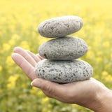 Zen stones. Stacked Zen stones with rape field in background Stock Photography