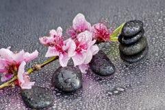 Zen stones Stock Photos