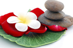 Zen stones Stock Images