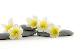 Zen Stones Royalty Free Stock Photography